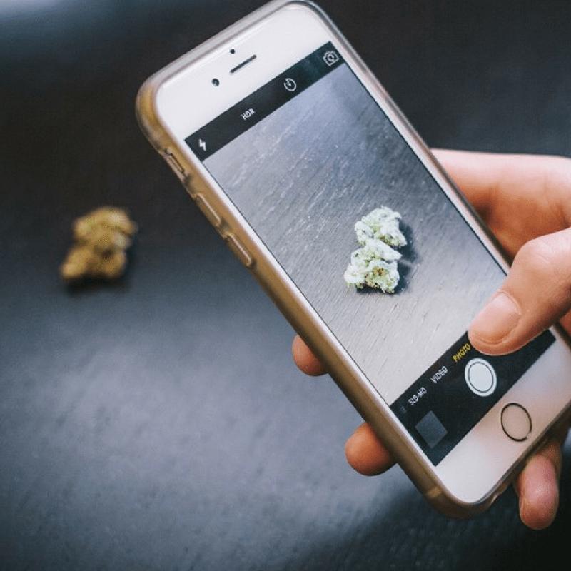 cannabis instagram marketing